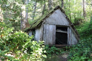 Randel Washburne's decayed cabin in the woods