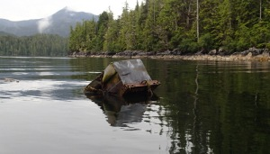 Flotsam: a storage tank washed off a fishing boat