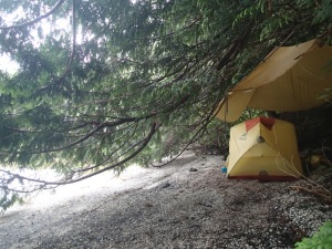 tent and tarp rigged under tree branches