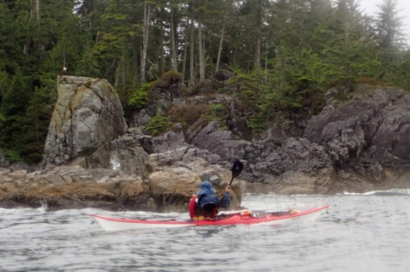 a sea kayak paddles past an eagle on the rocks