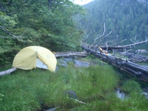 a tent propped against a driftwood log near the water's edge