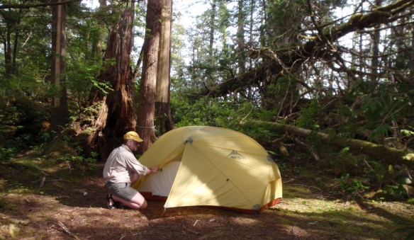 a camper sets up his tent in the woods