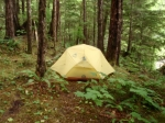 a tent set up in the woods at Sarah Island, BC