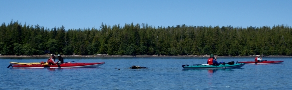 a group of sea kayakers on the water