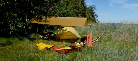 a sunny campsite with sea kayak