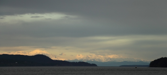 Washington's Cascade Mountains seen from Arbutus Point, Portland Island, BC