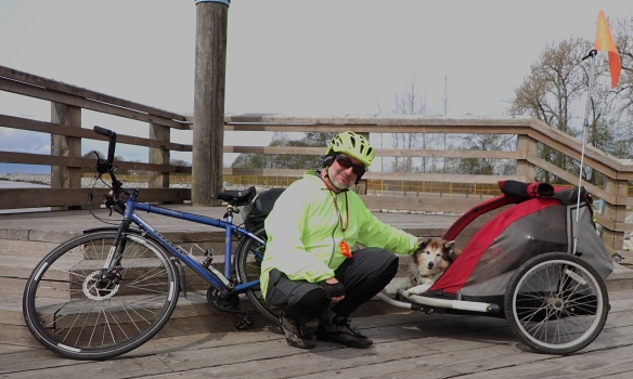 a photo of me with Scotia in her bike trailer