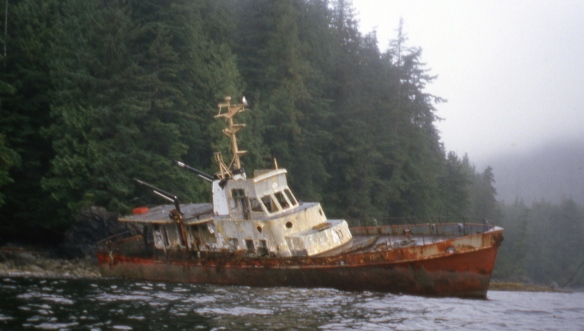 a shipwreck on the shore