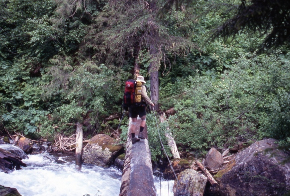 crossing a log-and-cable footbridge